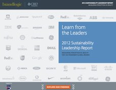 Sustainability leadership report site